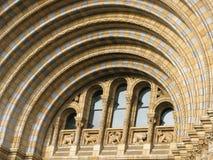 Configuración de Victorian - museo de la historia natural Fotografía de archivo