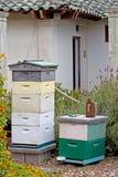 Configuración del jardín de la apicultura de la vendimia Imagen de archivo
