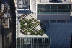 Configuración moderna del jardín superior de la azotea Fotos de archivo libres de regalías