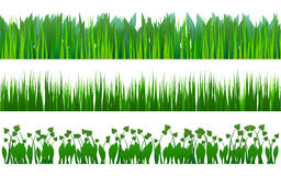 Configuration d'herbe Photo stock