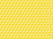 Configuration de chambre de miel Images libres de droits