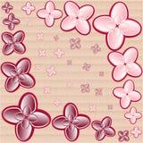 Configuration de fleur Photos stock