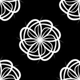 Configuration de fleur blanche Images libres de droits