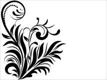 Configuration de fleur décoratif Image libre de droits