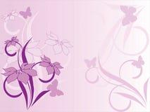 Configuration de fleur décoratif Photos libres de droits