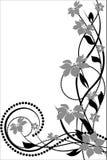 Configuration de fleur décoratif Photo libre de droits