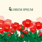 Configuration de fleur pavot bannière ou design de carte Illustration Image libre de droits