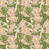 Configuration de fleur rose antique de cru illustration libre de droits