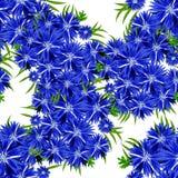 Configuration de fleur sans joint de vecteur Photos stock