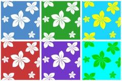 Configuration de fleurs Photographie stock libre de droits