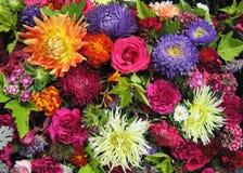 Configuration de fleurs colorée images libres de droits