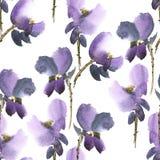 Configuration de fleurs violette Photo stock