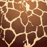 Configuration de giraffe illustration libre de droits