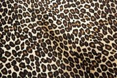 Configuration de léopard Images libres de droits