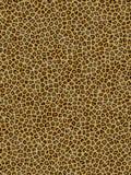 Configuration de léopard Image libre de droits