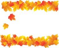 Configuration de lames d'automne illustration de vecteur
