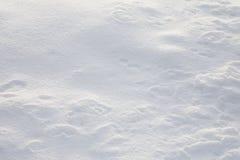 Configuration de neige de Noël Images stock