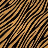 Configuration de peau de tigre Images libres de droits