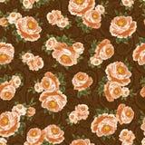 Configuration de Rose Photo stock