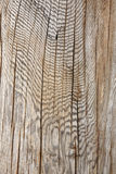 Configuration en bois abstraite. images libres de droits