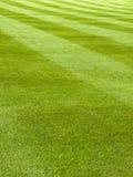 Configuration fauchée d'herbe Photographie stock libre de droits