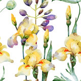 Configuration florale Image libre de droits
