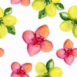Configuration florale Photo stock