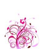 Configuration florale Image stock