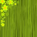 Configuration florale Photo libre de droits