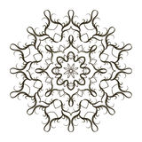 Configuration florale ronde Photo libre de droits