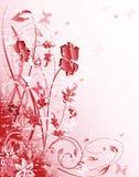 Configuration florale rose Images stock