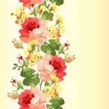 Configuration florale sans joint avec des roses Photographie stock libre de droits