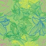 Configuration florale sans joint de vecteur Photos stock