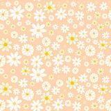 Configuration florale sans joint Illustration d'isolement de vecteur illustration libre de droits