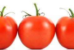 Configuration fraîche de tomates Photos stock