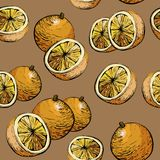 Configuration orange Fond sans couture Fond juteux d'agrumes Modèle sans couture d'agrume avec des oranges illustration libre de droits