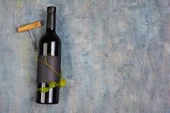 Configuration plate de bouteille de vin organique menteuse avec le label vide noir, le tire-bouchon et la vigne verte photos libres de droits