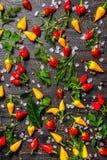 Configuration plate des épices décoratives, poivrons secs, sel de mer, différent photographie stock libre de droits