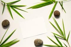 Configuration plate minimale avec la feuille et la pierre vertes Feuille et caillou en bambou de mer sur le fond blanc Image libre de droits