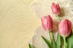 Configuration rose de tulipes à la frontière brodée à jour Photographie stock