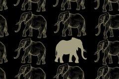 Configuration sans joint avec des éléphants illustration stock