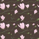 Configuration sans joint avec des fleurs de magnolia Photo stock