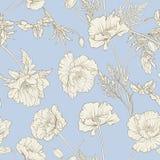 Configuration sans joint avec des fleurs de pavot Photographie stock