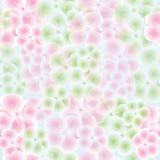 Configuration sans joint avec des fleurs de pomme Photographie stock