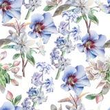 Configuration sans joint avec des fleurs Fleur Jacinthe watercolor Photographie stock libre de droits