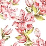 Configuration sans joint avec des fleurs Illustration d'aquarelle d'aspiration de main Photos stock