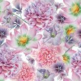 Configuration sans joint avec des fleurs Pivoine lotus pétunia Illustration d'aquarelle Photos libres de droits