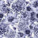 Configuration sans joint avec des fleurs Pivoine lotus pétunia Illustration d'aquarelle Image libre de droits