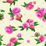 Configuration sans joint avec des pivoines Pivoine Fleurs et bourgeons Fond de mariage illustration de vecteur