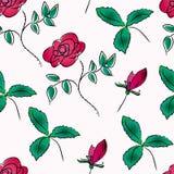 Configuration sans joint avec des roses Images stock